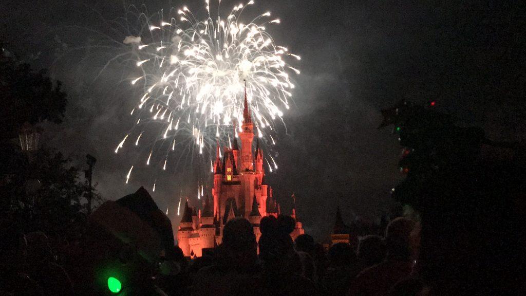 Adult Trip to Disney