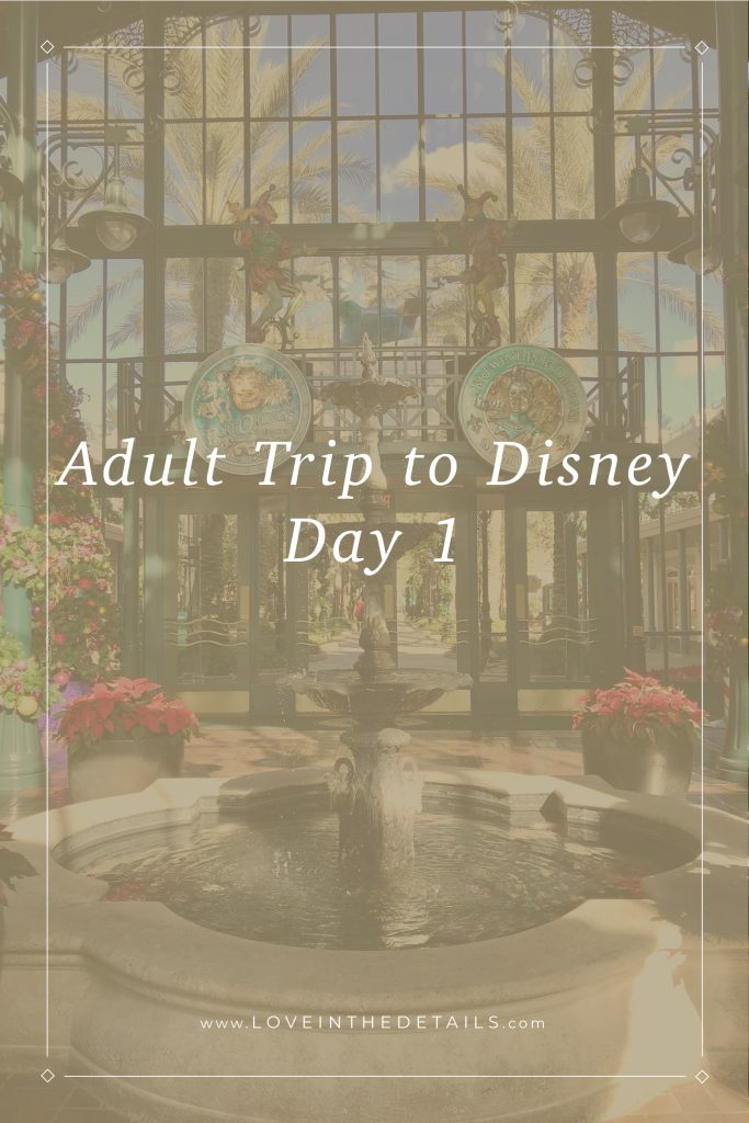 Adult Trip to Disney