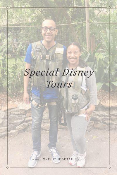 Special Disney Tour
